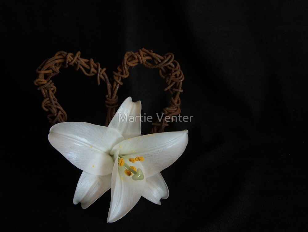 White Lily with Rusted Heart by Martie Venter