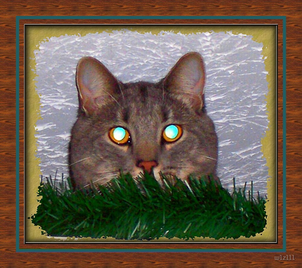 Look into my eyes... by w1z111