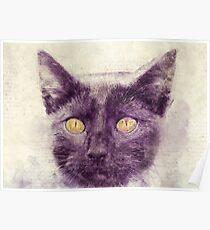 Black kitty art Poster