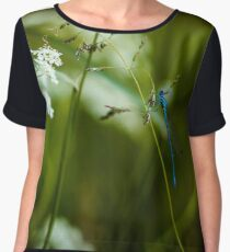 Polish Dragonfly in the Grass Women's Chiffon Top