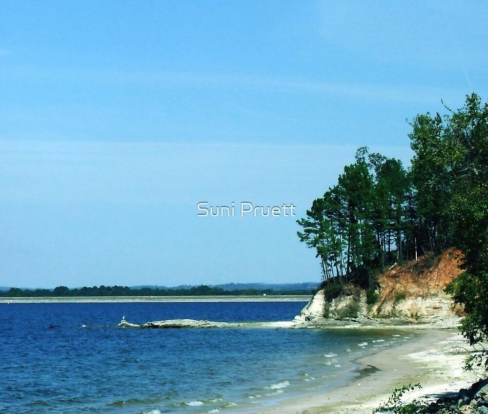 Lake Toledo Bend by Suni Pruett