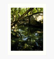 Garden of Alupka Palace Art Print