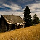 Old Home by Nick Johnson