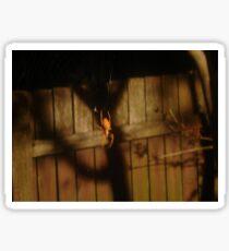 Spidery Web & Fence Sticker
