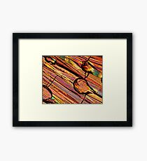 Microscopy, abstract art Framed Print