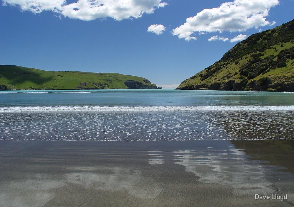 Beach Reflections by Dave Lloyd
