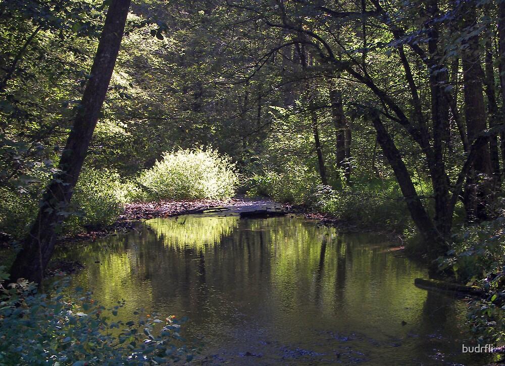 impression of a creek by budrfli