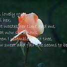 Rose by Basil