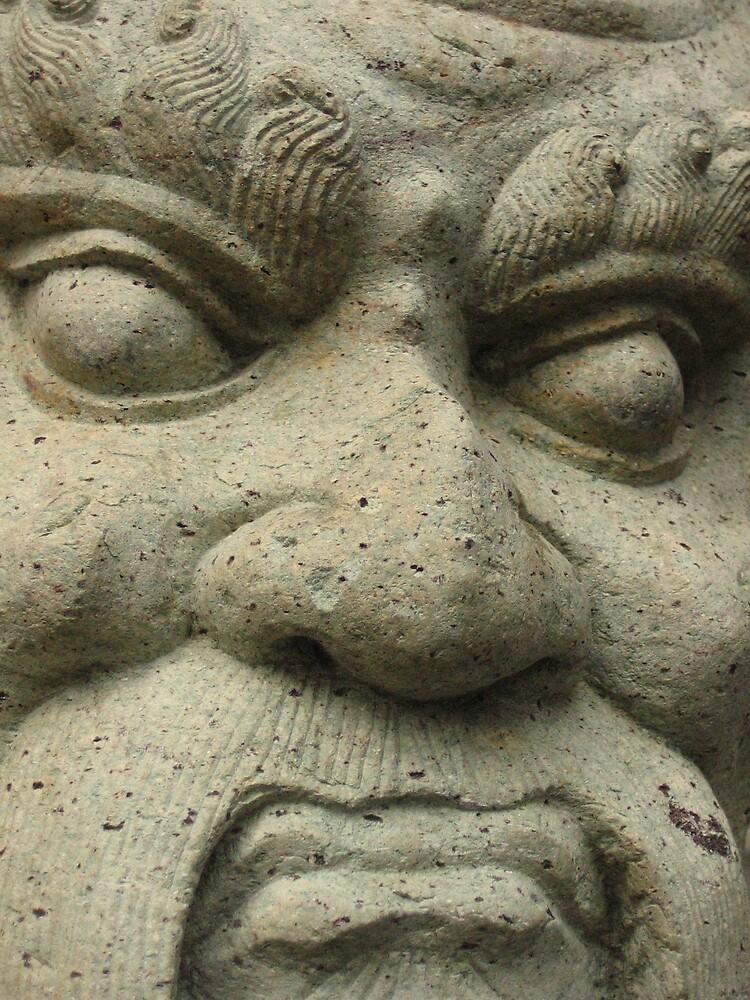 stone face by melanie tschiderer