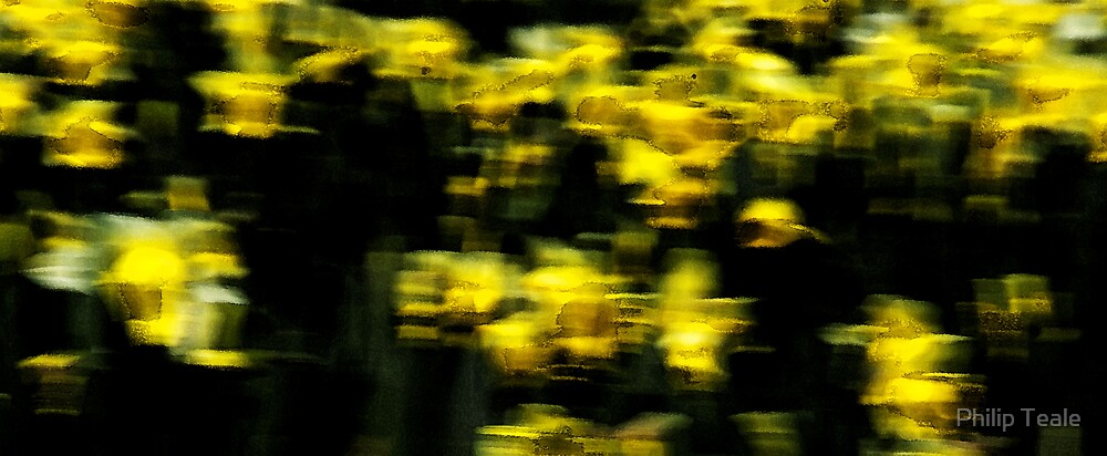 Yellow Study by Philip Teale