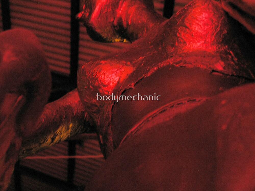 foil boobs by bodymechanic