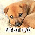 Pupper Love by flashman