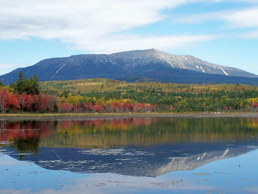 Mountain Reflections by Gene Cyr