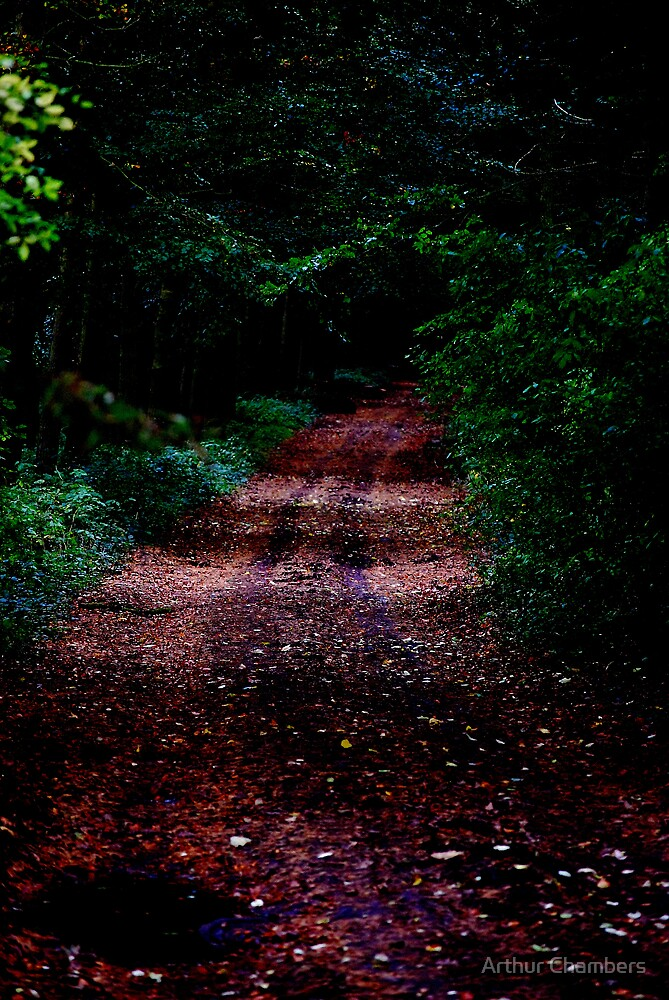 Road to fairyland...................  by Arthur Chambers