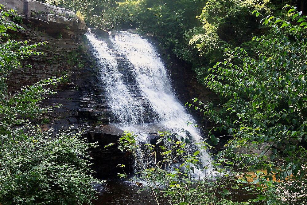 Swallow Falls by kaseylc