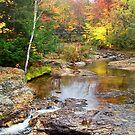 Autumn in Maine by Tina  Bark