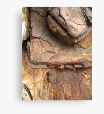 Rust Stained. Canvas Print