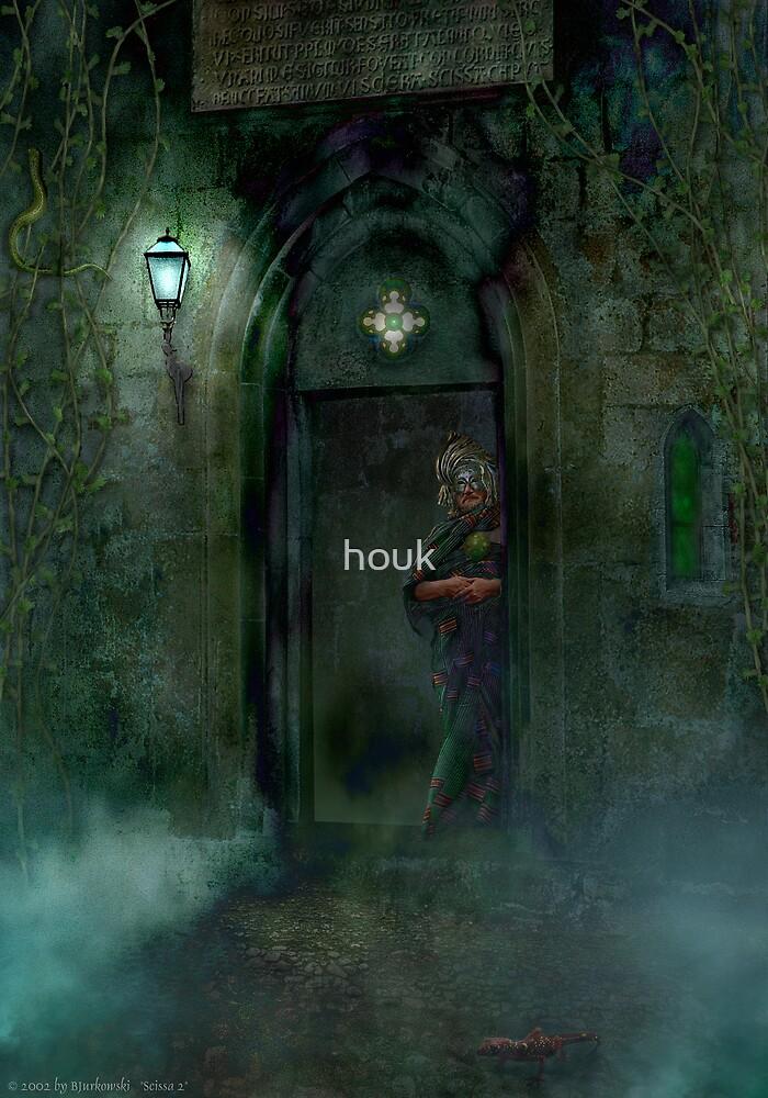 Scissa 2 by houk