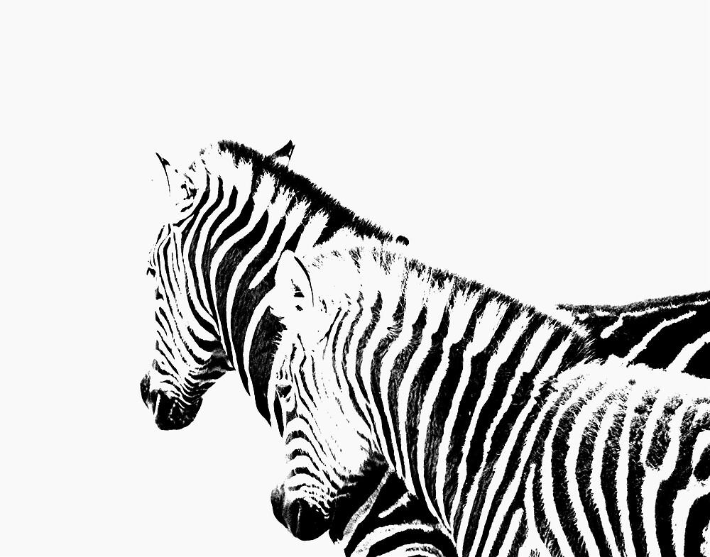 Zebra Dreaming by Princessbren2006