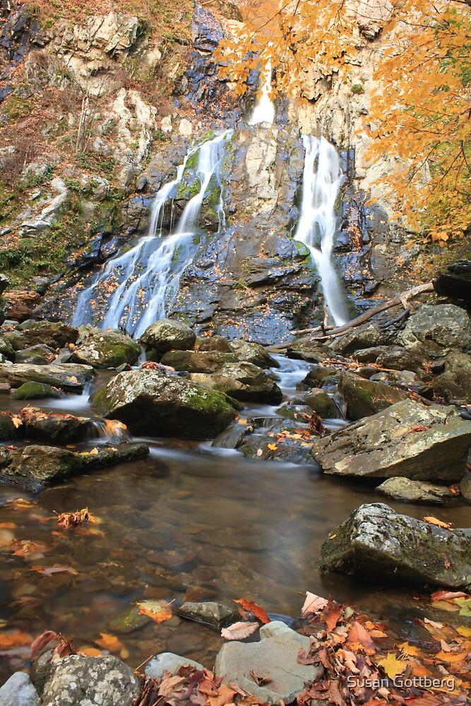 Autumn Waterfall by Susan Gottberg
