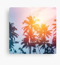 Beach sunset at the coast line Canvas Print