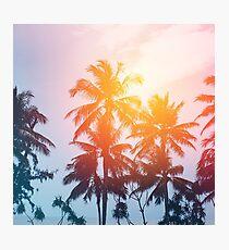 Lámina fotográfica Puesta de sol en la playa en la línea de la costa