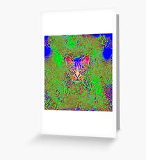 Polar aurora cat Greeting Card