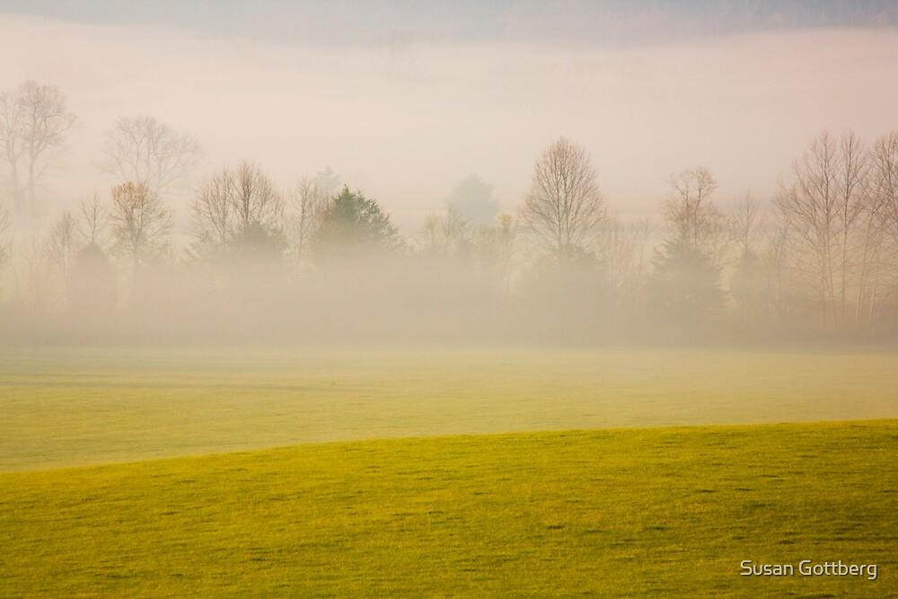 Morning Fog by Susan Gottberg