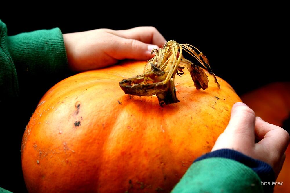Pumpkin Innocence by hosierar
