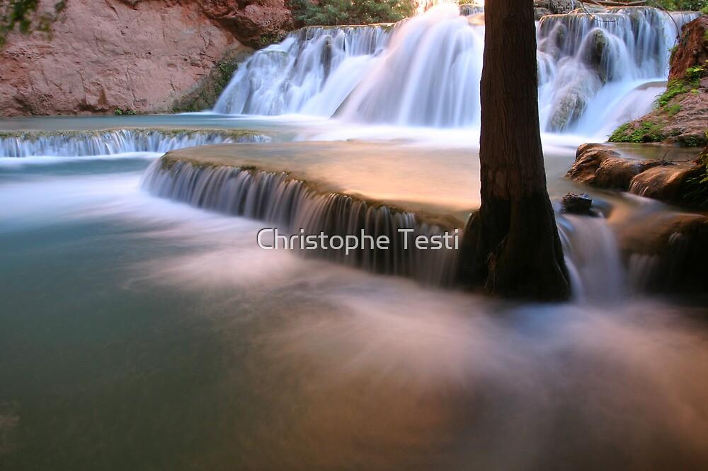 Havasu Creek by Christophe Testi