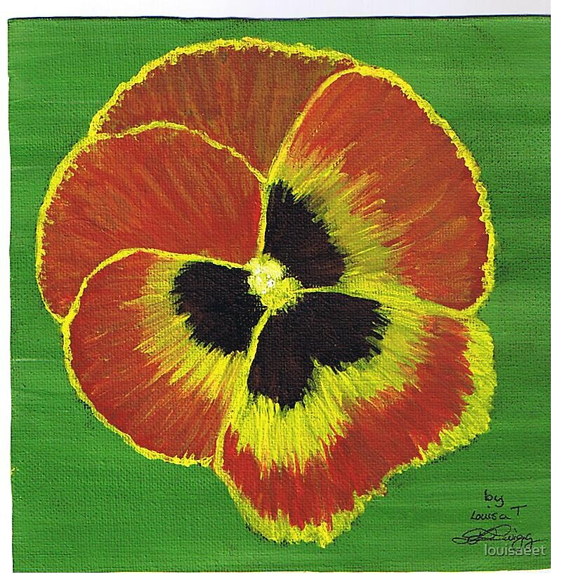 pansy  by louisaeet