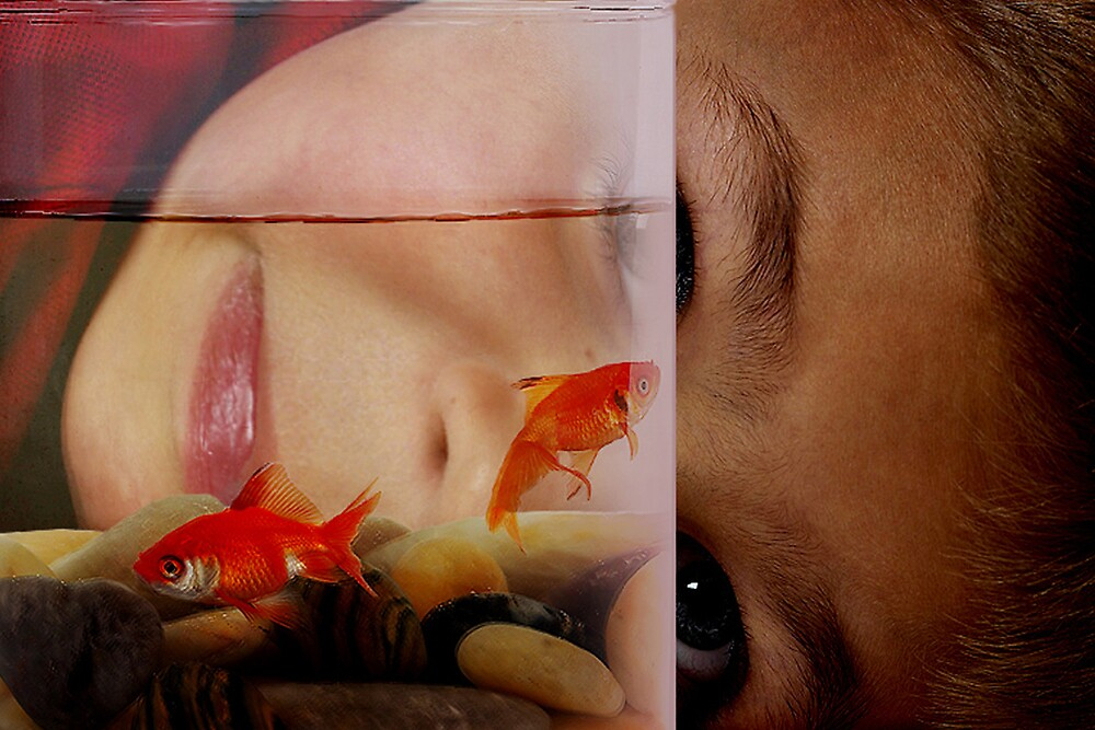 Boy and Fish by YourSuccess