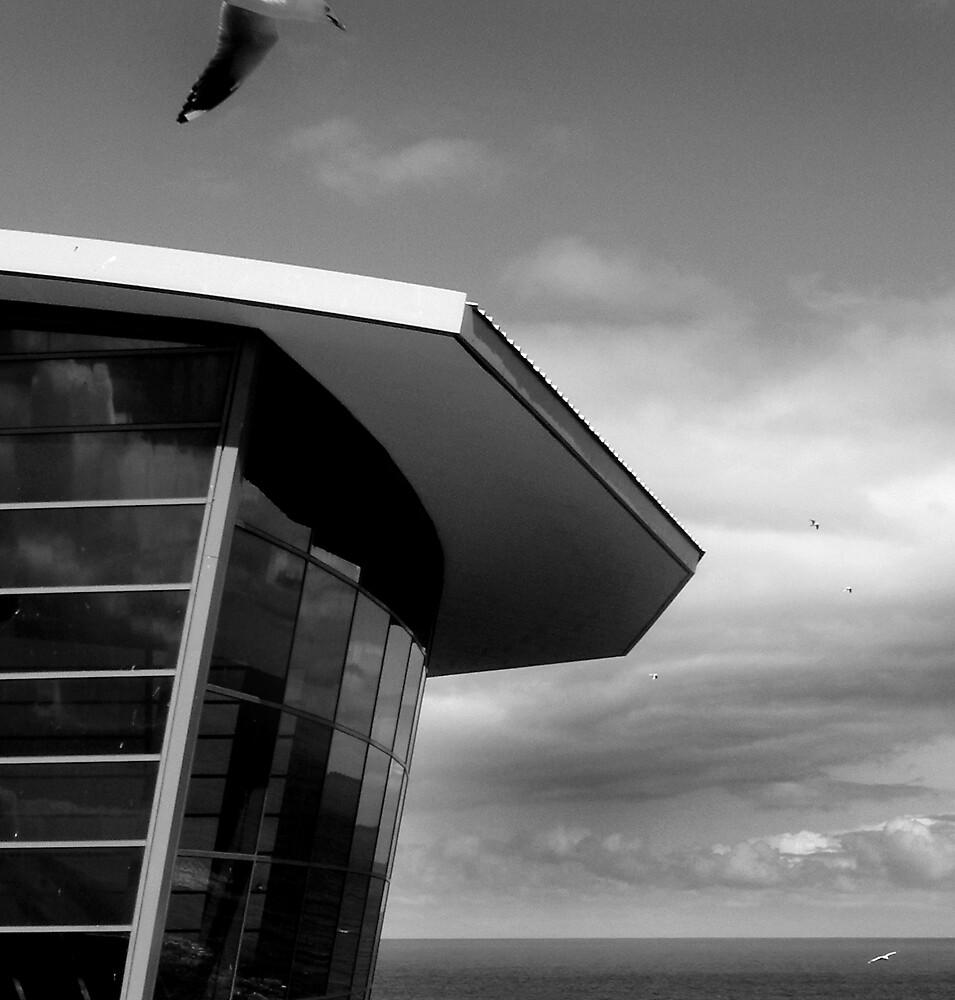 Fly by Bruce  Watson