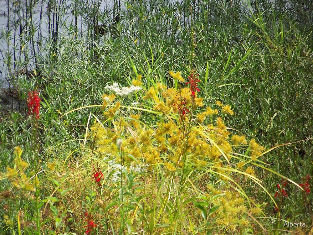 Flowers by Alberta