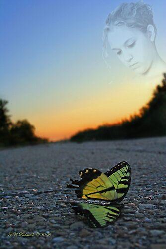 Death of a Beauty by grinandbearit