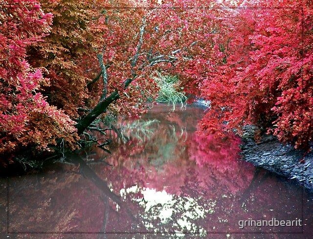 Fall Colors by grinandbearit