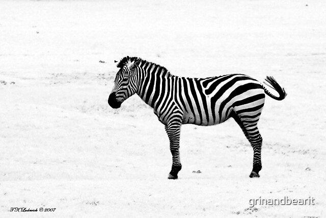 It's all so Black & White by grinandbearit