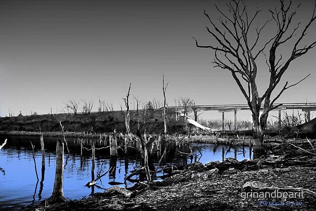 Blue Waters by grinandbearit