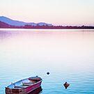 Boat at sunset by Silvia Ganora