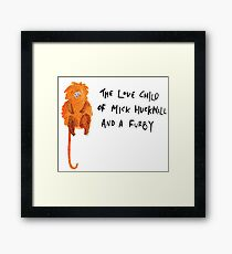 Golden Lion Tamarin Framed Print