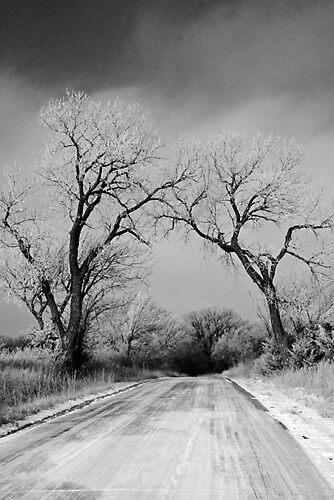 Road of Mystery by grinandbearit