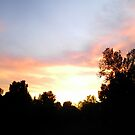 Fiery sunset by Robin Harrison