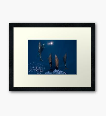 Bow Riders Framed Print