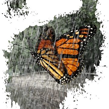 Butterfly Rain by summers83