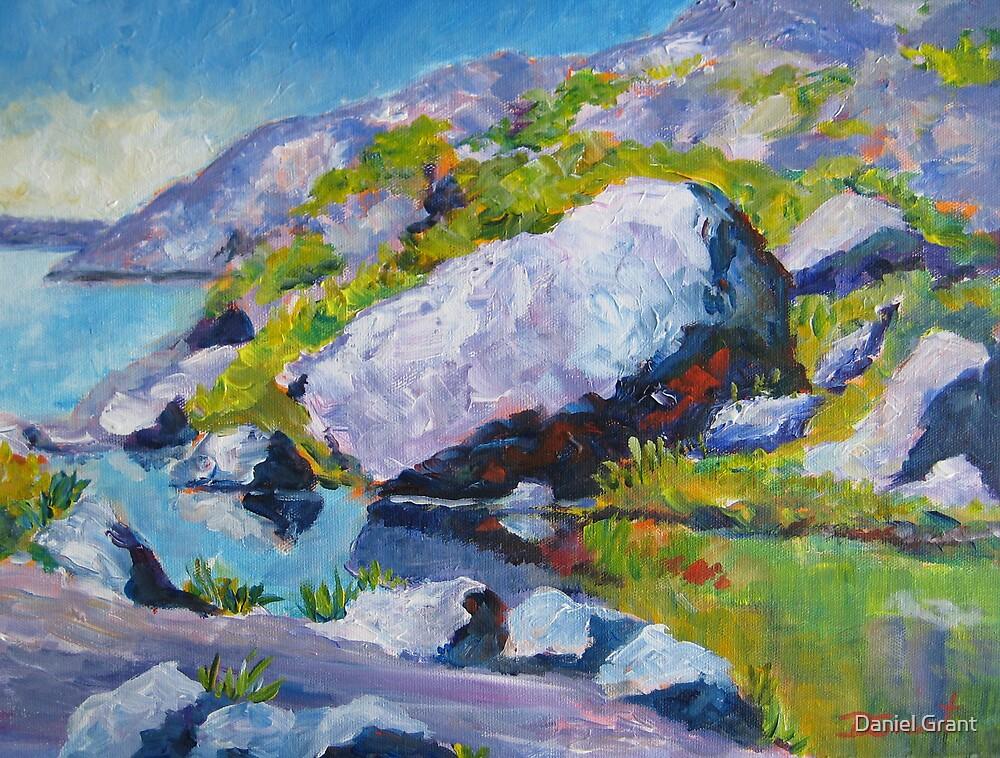 Rocky Shore  by Daniel Grant