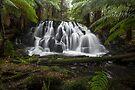 Somewhere Falls by John Morton