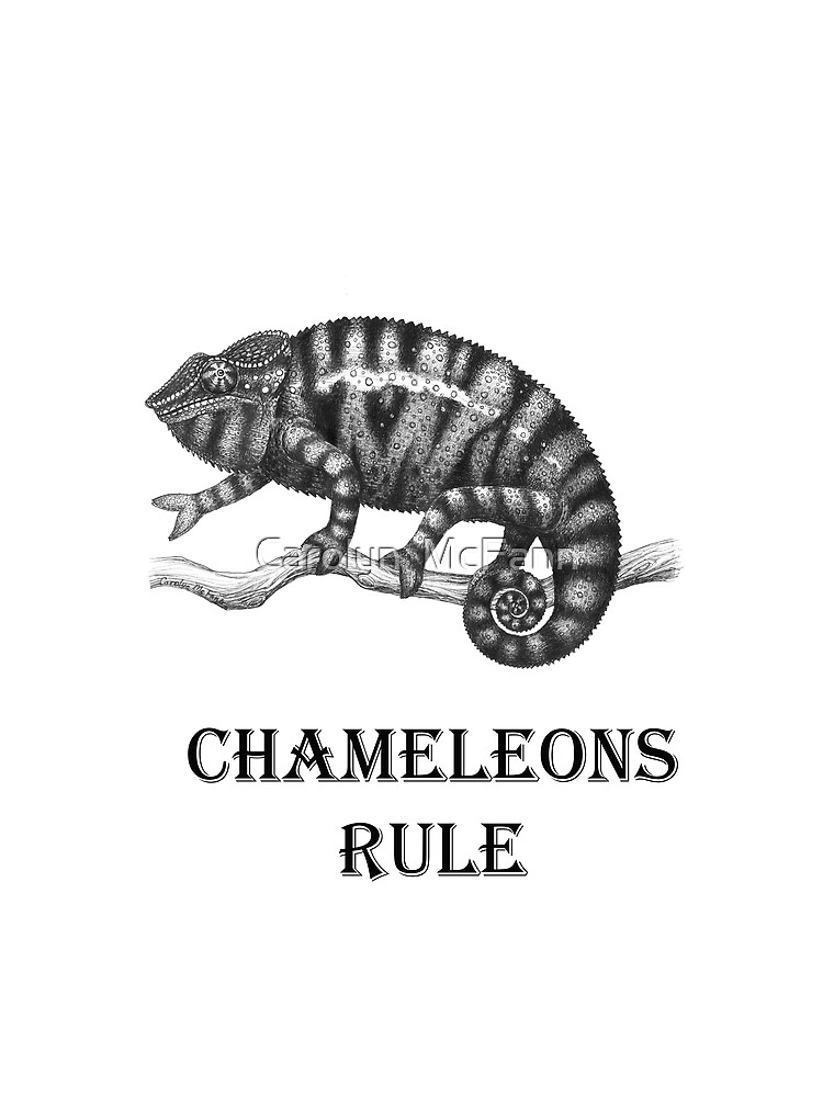 Chameleon by twopurringcats