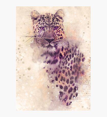 gepard art  Photographic Print