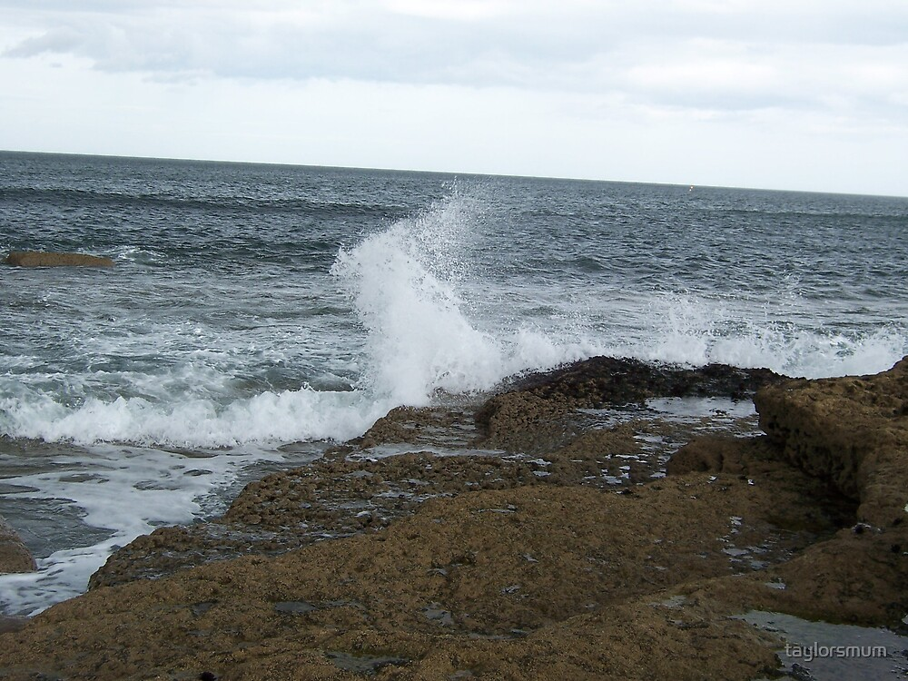 a splash of water/a touch of rock by taylorsmum