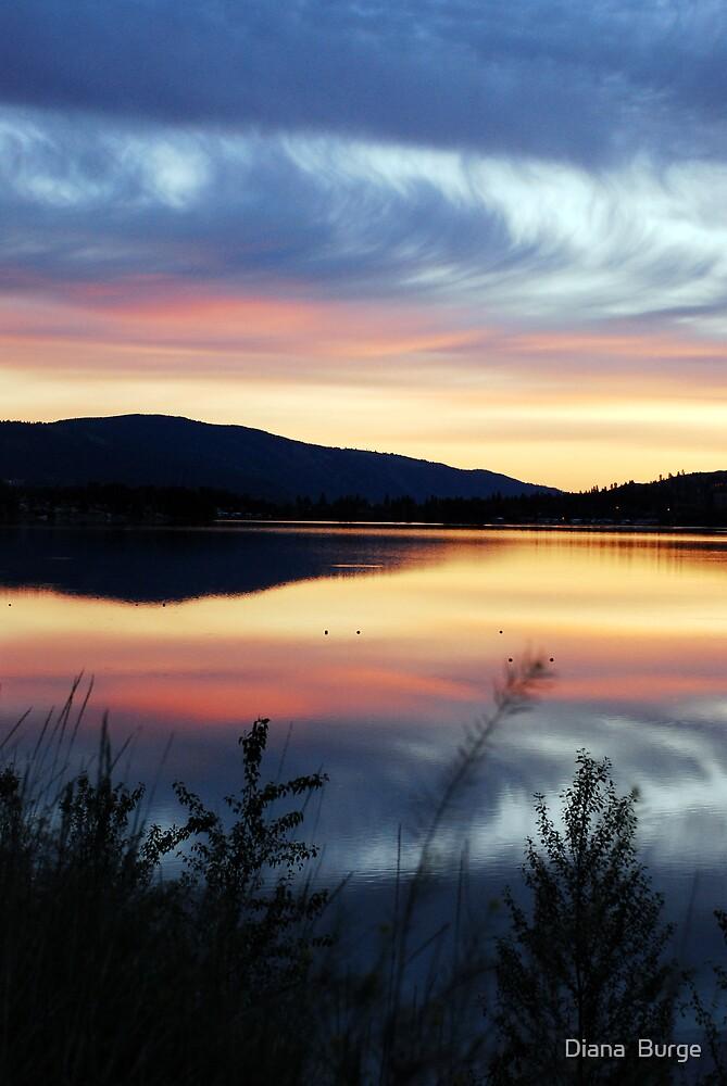 Sunrise in the Okanagan by Diana  Burge